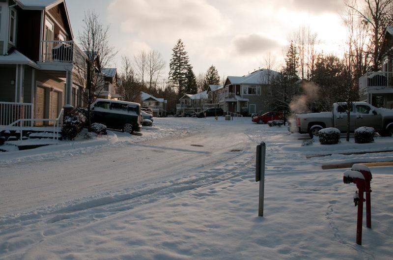 Snow December 2008